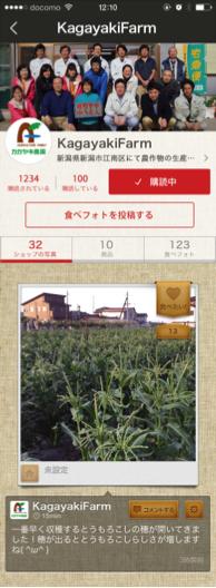 miil_kagayaki